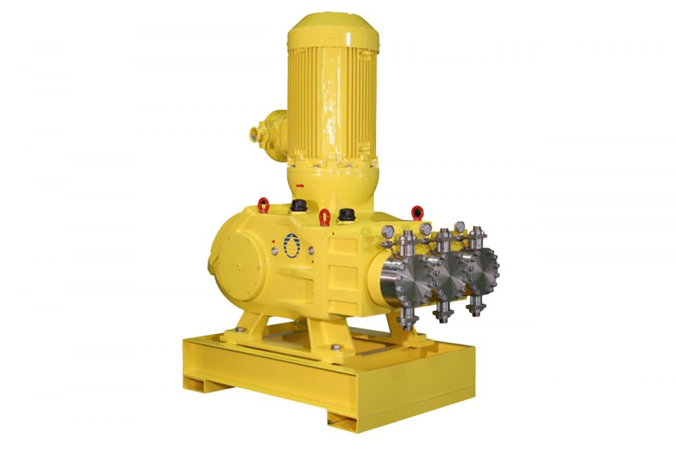 Milton Royal Megaroyal Positive Displacement Pump | EW Process